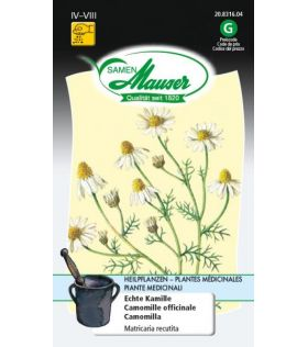 Camomille officinale