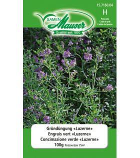 Engrais vert Luzerne 100g (25 m2)