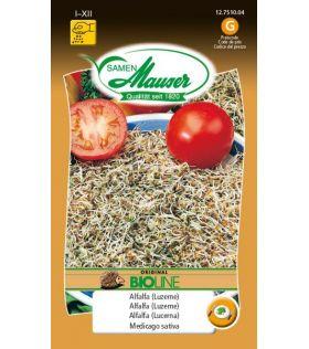 Germes de graines Alfalfa (luzerne) BIO