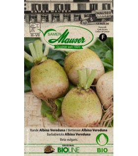 Betterave à Salade Albina Vereduna BIO