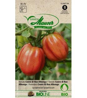Tomate Coeur de Boeuf Albenga BIO
