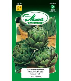 Artichaut Vert Glove