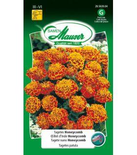Oeillet d'Inde Honeycomb