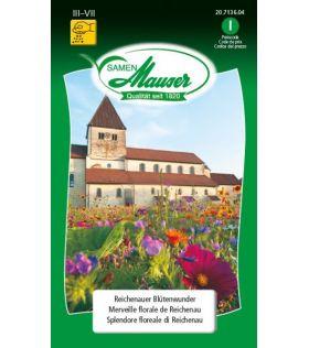 Merveille Florale de Reichenau