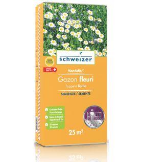 Semences - Gazon fleuri