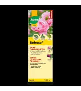 Belrose contre maladies fongiques
